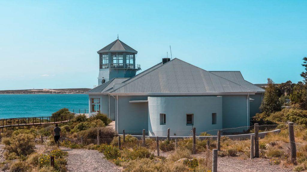 Visitar el Ecocentro de Puerto Madryn